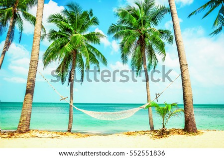 Beautiful Beach Hammock Between Two Palm Trees On The Holiday And Vacation Concept