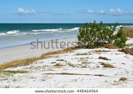 Beautiful Beach Landscape on the Coastline of Anna Maria Island, Florida - stock photo