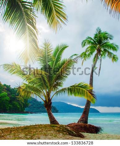 Beautiful beach scene - stock photo