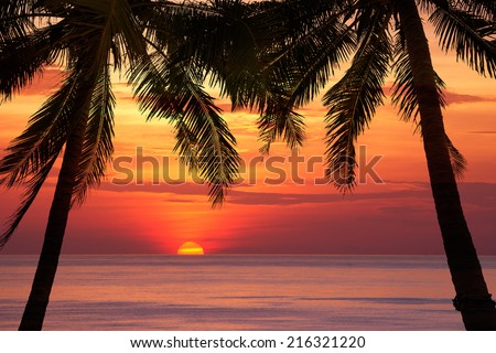 Beautiful beach sunset over the sea with coconut tree - stock photo