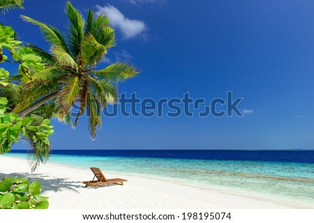 beautiful beach with coconut palm trees and wooden deck chair on white sand with ocean view - stock photo