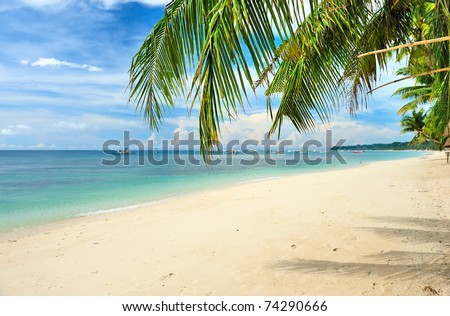 Beautiful beach with palm trees at Philippines - stock photo