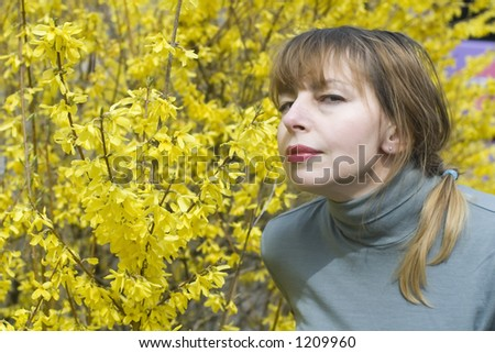 Beautiful blond smelling yellow flowers