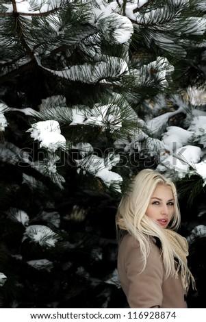 Beautiful blonde girl winter portrait - stock photo