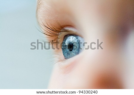 Beautiful blue eye macro shot - stock photo