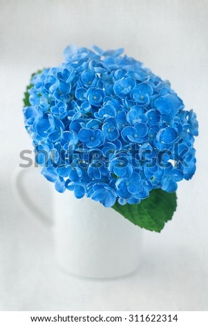 beautiful blue hydrangea flowers in a porcelain cup on a table .vintage style ,grunge paper background.  - stock photo