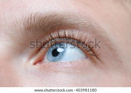 Beautiful blue man eye close up, eyelash extension - stock photo
