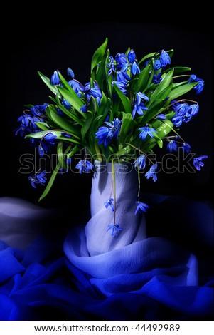 Beautiful blue natural fresh snowdrops still life - stock photo