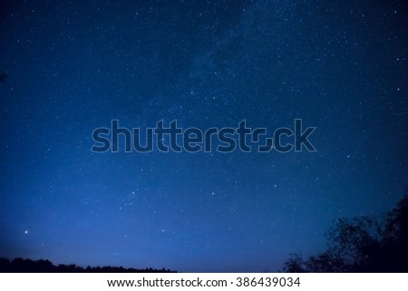 Beautiful blue night sky with many stars above the forest. Milkway space background - stock photo