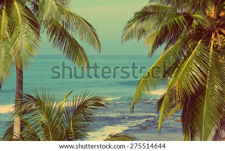 beautiful blue sea landscape with palm leaves on foreground - vintage retro style