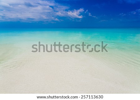 beautiful blue  sea tropical nature background holiday luxury  resort island atoll about coral reef amazing  fresh  freedom snorkel adventure - stock photo