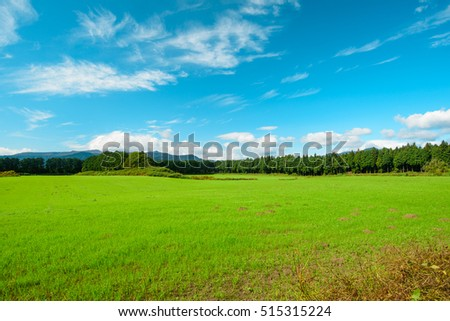 Beautiful blue sky and clouds with green grass field