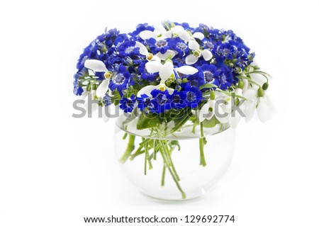 Beautiful  blue spring bouquet in vase - stock photo