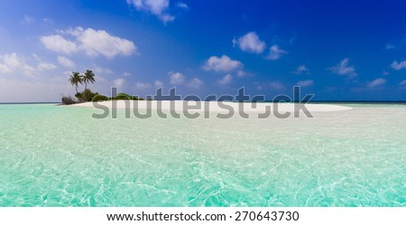 beautiful blue sun sea tropical nature background holiday luxury  resort island atoll about coral reef amazing  fresh  freedom snorkel adventure. Coconuts   - stock photo