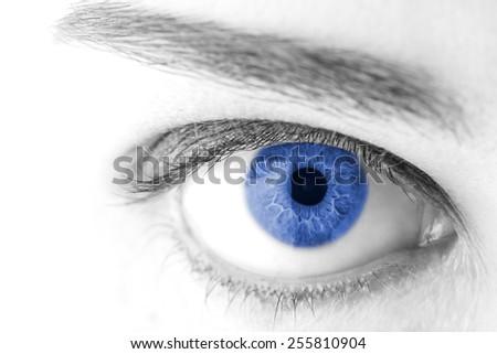 beautiful Blue woman eye macro shot - stock photo