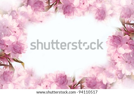 beautiful blur pink flowers made with color filters - stock photo