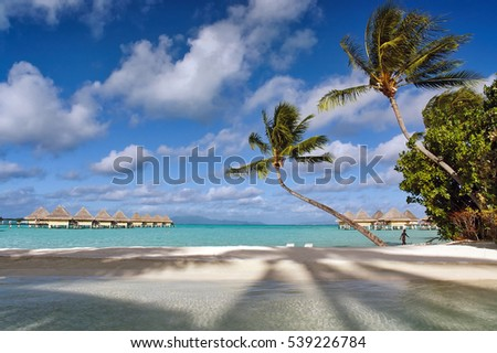 Beautiful Bora Bora beach view with palm trees, lagoon and bungalows over the water