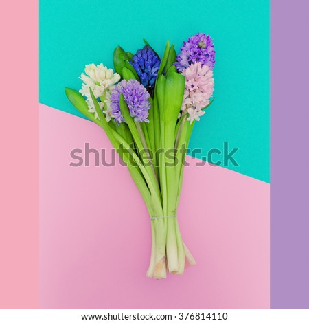 Beautiful Bouquet. Aroma of Spring. Minimalist fashion. Pastel colors trend - stock photo