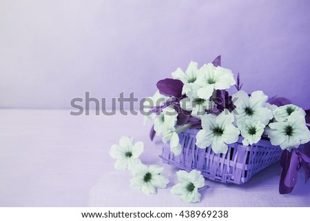 beautiful bouquet of bright purple flowers in basket on wooden table,vintage tone.   - stock photo