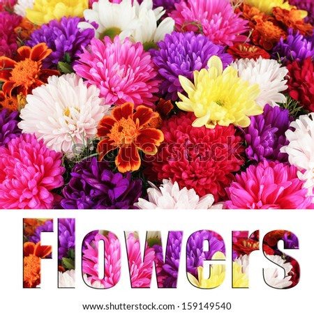 Beautiful bouquet of chrysanthemums close-up - stock photo