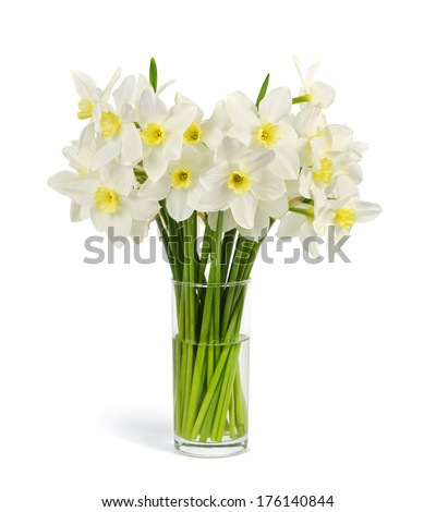 beautiful bouquet of fresh narcissus isolated on a white