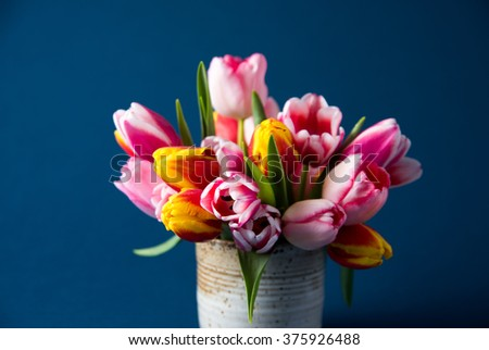 Beautiful Bouquet of Freshly Cut Colorful Tulips on Dark Blue Background - stock photo