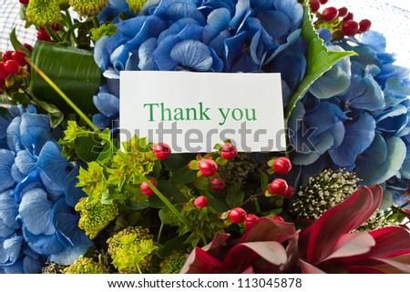 beautiful bouquet of Hydrangeas on a white background - stock photo
