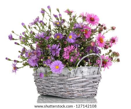 Delhi Jeweled ramo de flores púrpura en enviar flores