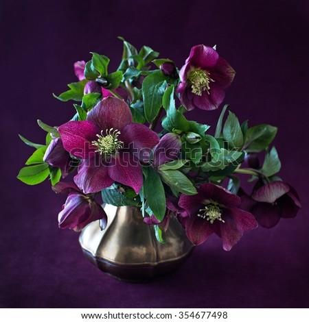 Beautiful bouquet of ? purple flowers on a dark background . - stock photo