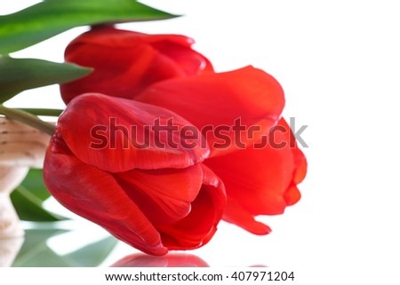 Beautiful bouquet of red  tulips  - stock photo