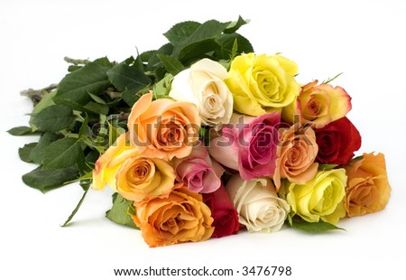 Beautiful bouquet of rose on white background
