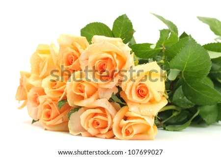 beautiful bouquet of roses isolated on white