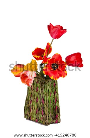Beautiful bouquet of tulips flowers in basket . Isolated on white.  - stock photo