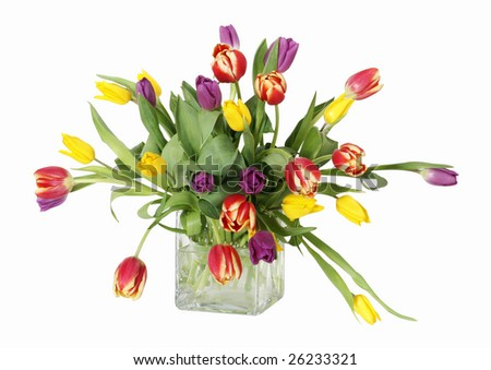 beautiful bouquet of tulips with clipping path - stock photo