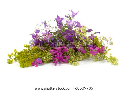 Beautiful bouquet of wild flowers on a white background