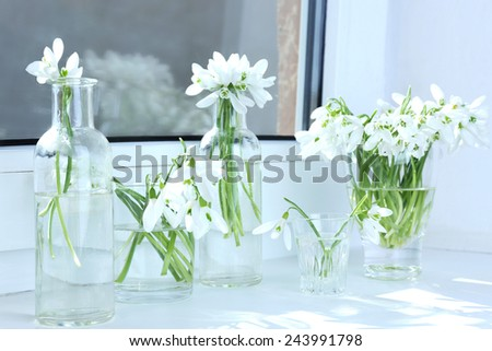 Beautiful bouquets of snowdrops in vases on windowsill - stock photo