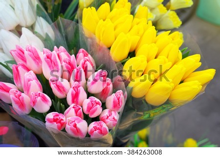 Beautiful bouquets of tulips. Fresh spring flowers