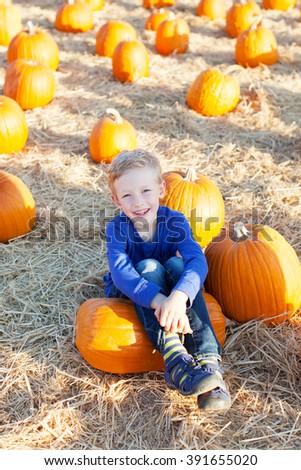 beautiful boy enjoying autumn time at pumpkin patch  - stock photo