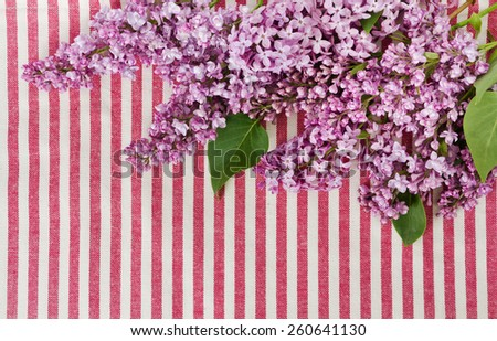 beautiful branches of a lilac on cotton fabric - stock photo