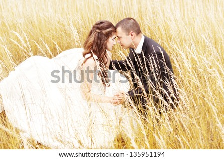 Beautiful bride and groom  in grass.  Wedding couple outdoors