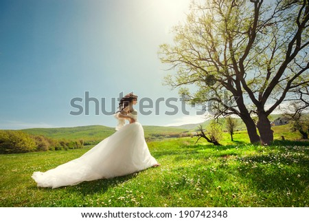 Beautiful bride in a white wedding dress walking on green grass in a field near a tree. Wedding theme. - stock photo