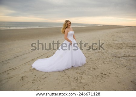 beautiful bride in her white wedding dress - stock photo