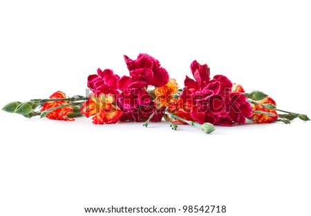 beautiful bright bouquet of carnations on a white background - stock photo