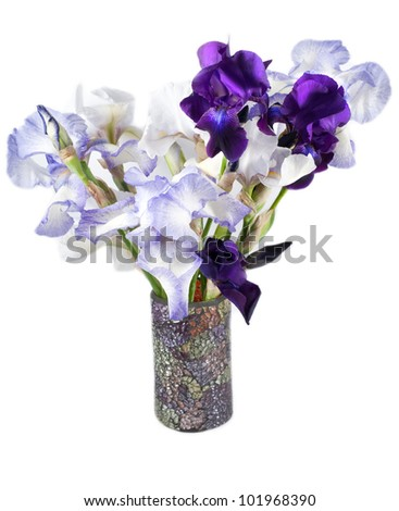 Beautiful bright irises in vase isolated on white - stock photo
