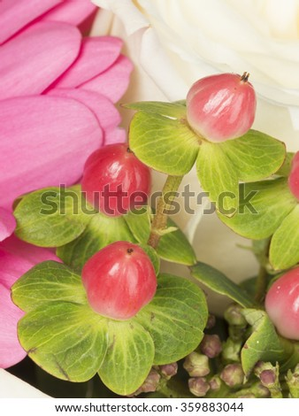 beautiful bright red berries of hypericum in a complex bouquet - stock photo