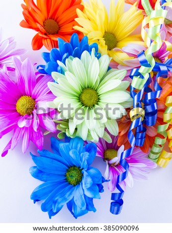 Beautiful bright spring flowers pastel colors stock photo royalty beautiful bright spring flowers in pastel colors on a white background mightylinksfo