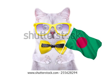 Beautiful British cat with the flag of Bangladesh. Language School. Flags of the world. Flags of countries - stock photo