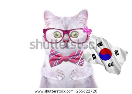 Beautiful British cat with the flag of South Korea. Language School. Flags of the world. Flags of countries - stock photo