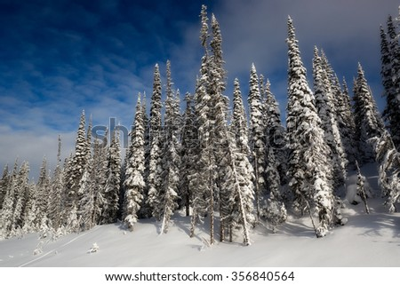Beautiful British Columbia - Winter in Canadian Rocky Mountains