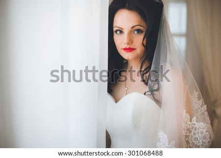 Beautiful brunette bride at the window - stock photo